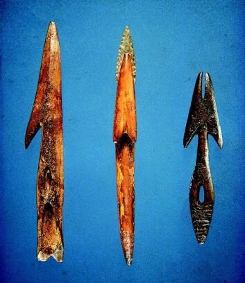 Redskaper som ble gravd ut på samme sted hvor de 4 000 år gamle hårtufsene ble funnet. (Foto: Bjarne Gronnow/Nature)