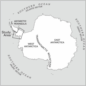 """""""Kartet viser området som er med i studien av issmelting i Antarktis. (Figur: U.S. Geological Survey)"""""""