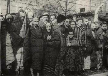 """""""Sigurd Skirbekk benekter ikke at Holocaust skjedde. Bildet er gjengitt med tillatelse fra Yad Vashem - The Holocaust Martyrs' and Heroes' Remembrance Authority."""""""