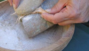 Mel lages på steinaldermåten. Foto: Istituto Italiano di Preistoria e Protostoria.