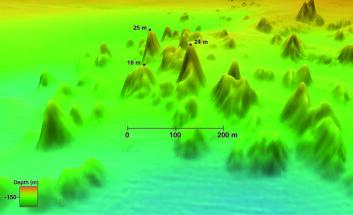 Gruppe av korallrev. Tallene viser høyden på noen av korallfjellene målt fra foten av fjellet. Havdyp på ca. 130-200 meter. (Illustrasjon: Statens kartverk Sjø/MAREANO)