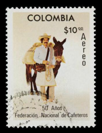 Kaffe er en viktig faktor i Colombias økonomi. (Foto: iStockphoto)