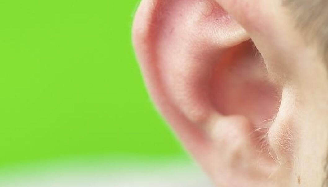 Voks er sunt – øret rundt