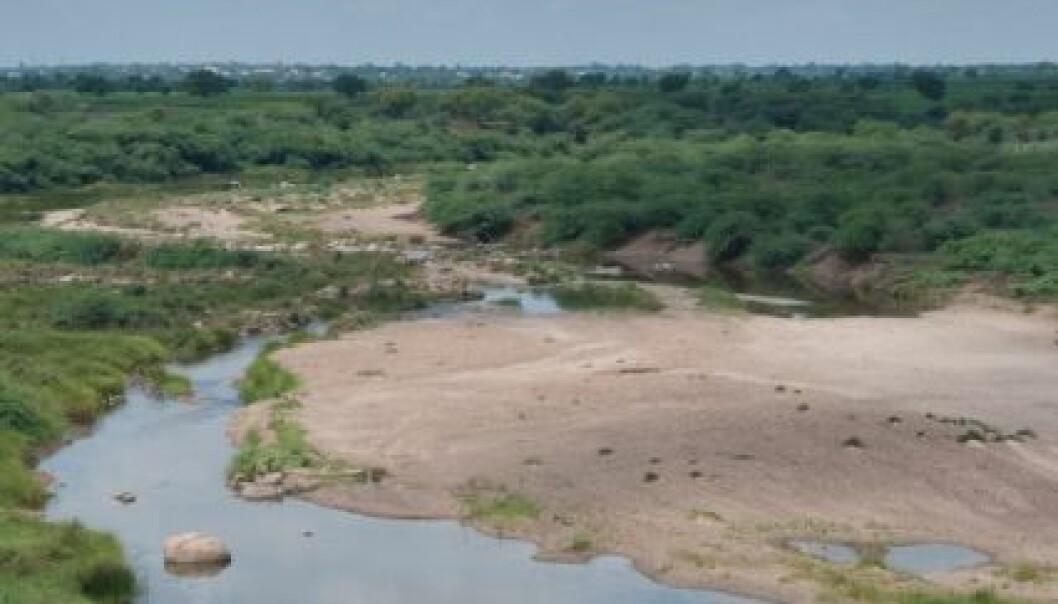 Fra området Andhra Pradesh som også har vært preget av ustabilitet i klimaet. Først med tørke store deler av sommeren og kraftig nedbør utenom sesong. (Foto: Ragnar Våga Pedersen)
