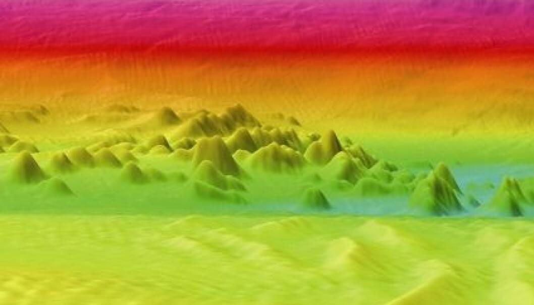 Viser korallfjell i 3D