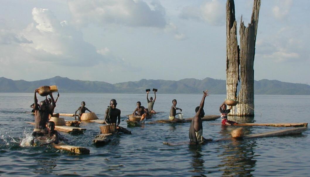 Gutter tester fiskerlykken på Bosumtwi i Ghana. (Foto: J.T. Overpeck og W. Wheeler, University of Arizona)