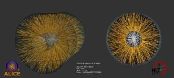 Bildet viser rekonstruerte spor av ladede partikler i ALICE sin hoveddetektor TPC (Time-Projection Chamber). De ladede partiklene ble dannet i en kollisjon mellom to blykjerner. (Illustrasjon: Cern)