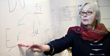 Spesialpedagog Turid Sandbakken tror Norge kan lære mye gjennom Dys-Learn-partnerskapet. Her underviser hun ved Oslo Voksenopplæring. (Foto: Truls Brekke)