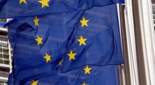 - Euroen har ikke gitt mer handel