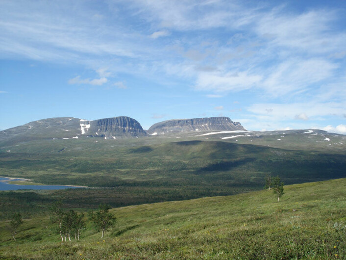 Skogen invaderer ikke nordområdene. Bildet viser Dividalen i Troms der forskere har kartlagt tregrensa. (Foto: S. Aune)