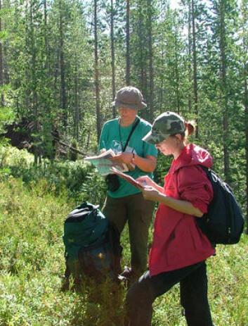 Registrering av skog under feltarbeid i Russland. (Foto: G. Rees)