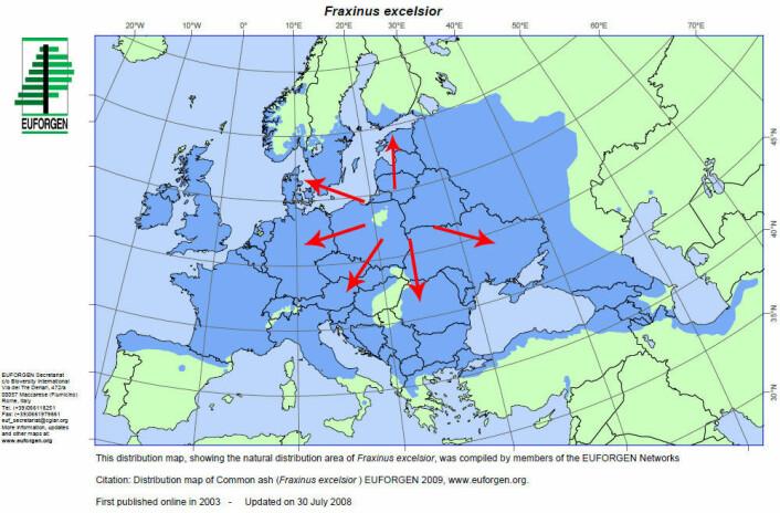 Forskerne har funnet ut at soppen har spredt seg fra Polen. På bildet kan du se hvordan sykdommen har spredt seg til resten av Europa. (Figur: Euforgen)