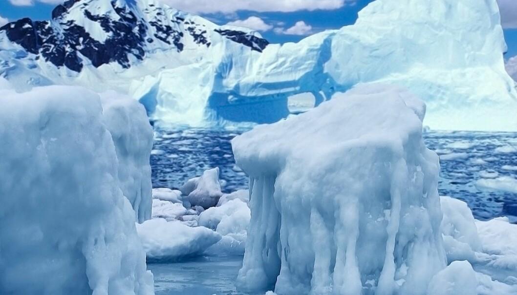 Mer is i Arktis i år