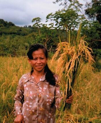 Foto: Utviklingsfondet