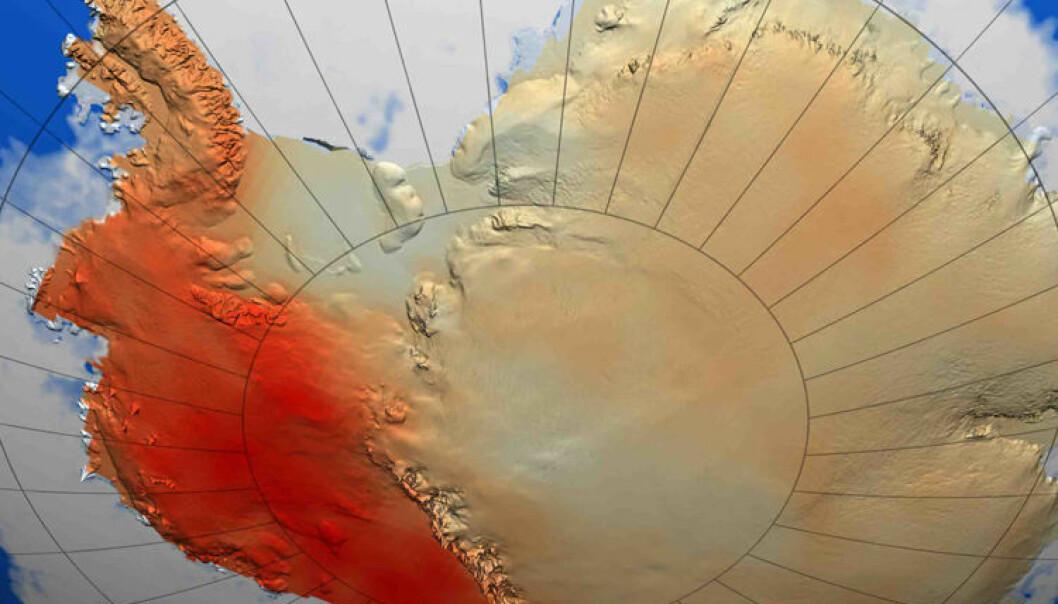 Illustrasjonen viser oppvarmingen forskerne mener har skjedd i Vest-Antarktis i løpet av de siste 50 åra. Jo mørkere farge, jo mer oppvarming. (Illustrasjon: NASA/ E. J. Steig)