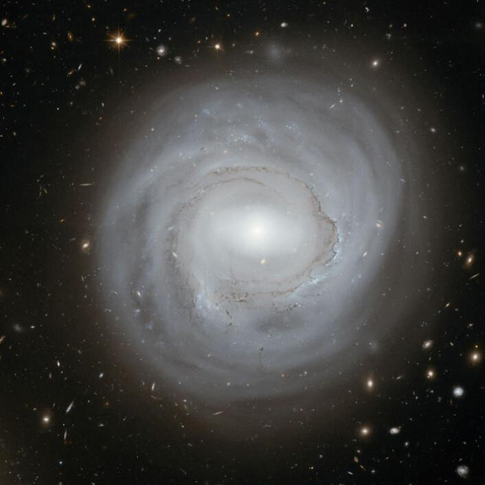 Hubbleteleskopet har tatt bilde av spiralgalaksen NGC 4921, i galaksehopen Coma Galaxy Cluster. (Foto: ESA/NASA)