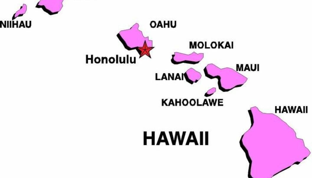 """""""Hawaii, og de andre vulkanøyene som ble skapt etter hvert som plata gled over en hotspot."""""""