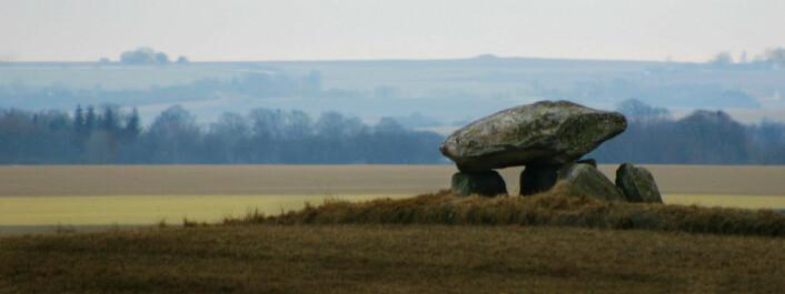 Steindysse nær Vinstrup, Nørhald. Dysse Dysse er en dansk betegnelse på megalitt- eller storsteinsgraver fra yngre steinalders traktbegerkultur. (Foto: Malene Thyssen)