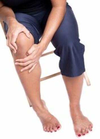 Unge har som regel bruskskader på mindre områder som følge av akutte skader.