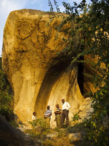 Arkeologane inspiserer ein av dei mange maleria og helleristningane i det austlege Zimbabwe. Frå venstre. Ancila Nhamo, Seke Katsamudanga, Gilbert Pwiti og Paul Mupira. (Foto:Eivind Senneset)