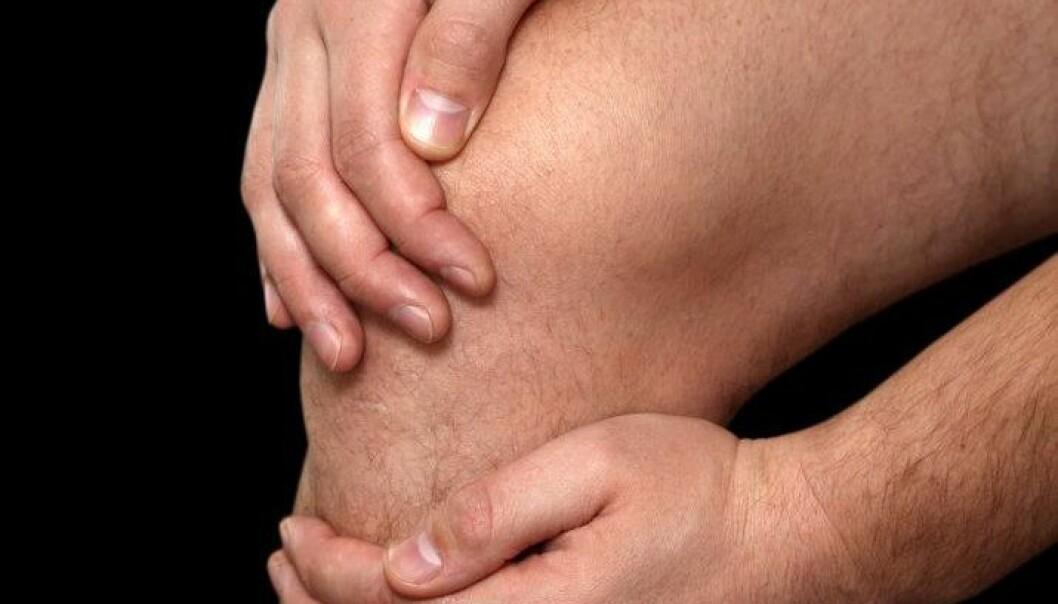 Vil fikse knær med stamceller
