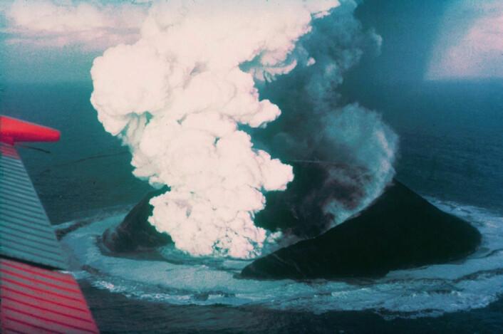 Vulkanøyer blir dannet og forsvinner hele tiden. Islandske Surtsey nærmest dukket opp av havet 14. november 1963, etter et vulkanutbrudd 130 meter under havets overflate. Utbruddet varte i tre og et halvt år og dannet en øy på knappe tre kvadratkilometer. I dag er øya erodert ned til det halve. (Foto: Howell Williams, U.S. National Oceanic and Atmospheric Administration)