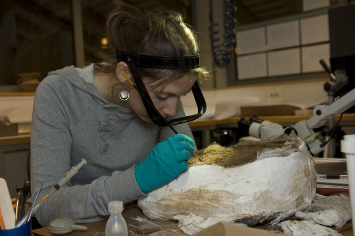 – Arkeologer er ikke bortskjemte på funn, og arbeider veldig ofte med små objekter som frø og kullrester.