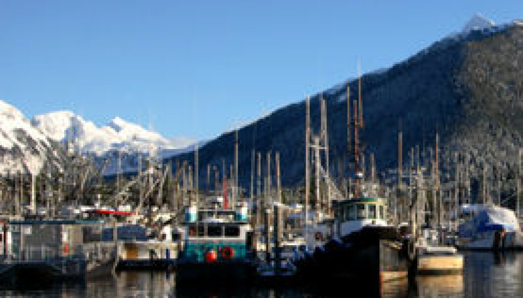 Fortsatt lave fiskekvoter utenfor Alaska