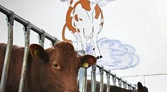 Mer melk uten mobbing