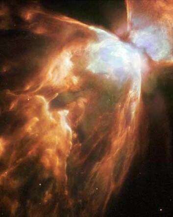 """""""Dette er ett av de nyeste bildene fra Hubble. Denne kosmiske sommerfuglen av en stjernetåke kalles Bug Nebula, eller NGC 6302, og er en av de mest ekstreme stjærnetåkene vi kjenner til. Den intense, døende stjerna i midten er kledd i et slør av isete hagl. (Foto: NASA/ESA)"""""""