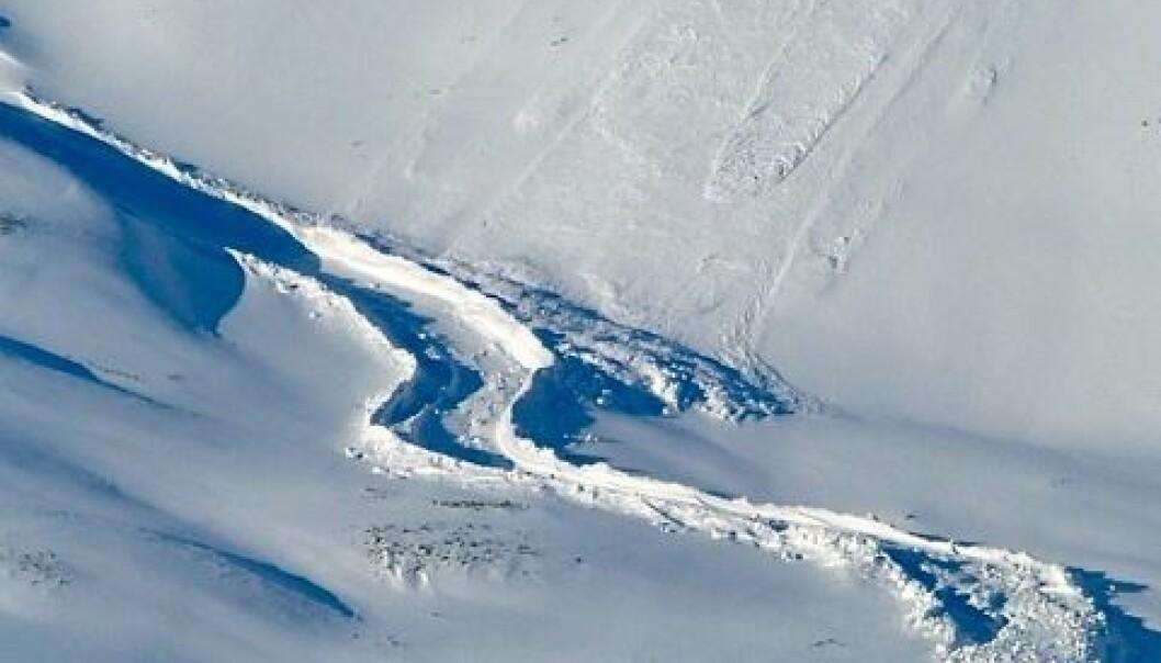 Et våtsnøskred bukter seg som en krokodille ned en fjellside i Todalen på Svalbard. Skredet nådde nesten en mye brukt snøscooterløype. (Foto: Hanne H. Christiansen)