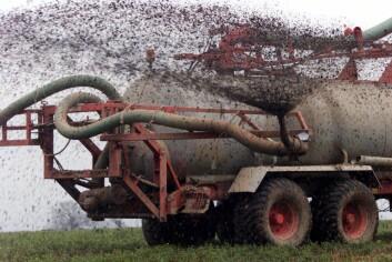 """""""Fosfor brukes i gjødsel i hele verden. Nå mener forskerne at reservene begynner å gå tomme. Illustrasjonsfoto: www.colourbox.no"""""""