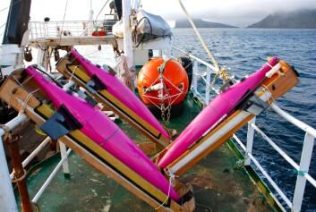 Ved hjelp av disse havgående robotene – såkalte Seagliders, utviklet ved University of Washington – har forskerne hentet inn en rekke måledata. (Foto: Privat)