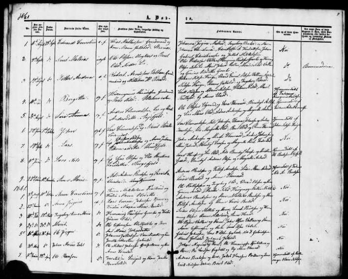 Utdrag fra kirkeboka i Hattfjelldal på Helgeland. Dette er dåp registrert i perioden 1860-1878. (Foto: kirken.no)