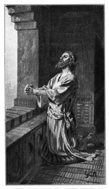 """""""Var koppene Guds straffedom?"""""""