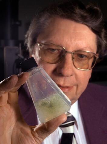 NASA-forsker scientist Richard Hoover viser fram mose som holdt seg i live men i dvale mens den var frossen i 40 000 i permafrosten i Sibir. (Foto: NASA/MSFC)