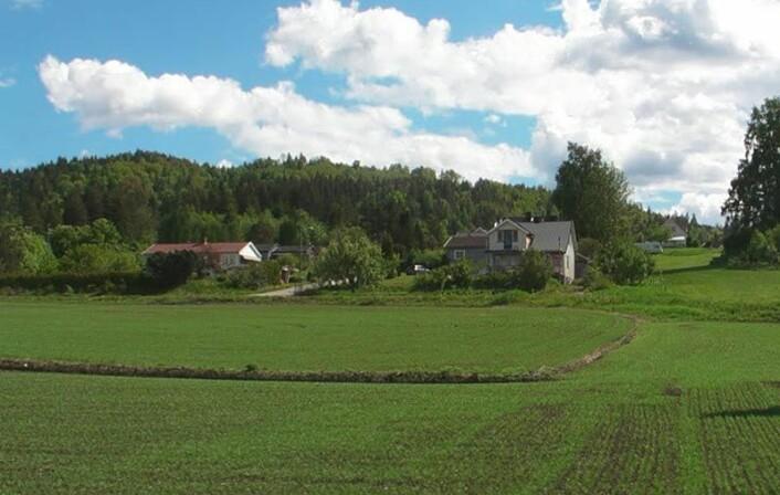 Fra Fensfeltet (Foto: Gunnvald Solli, Norsk Thorium)