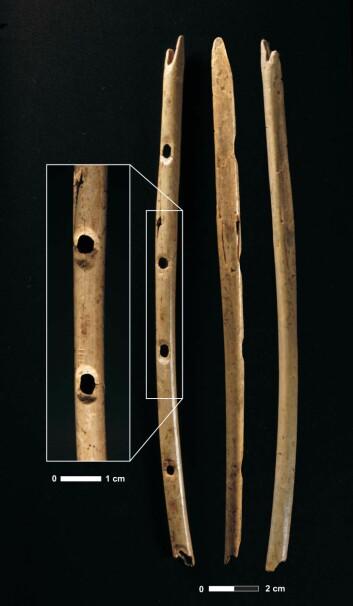 """""""Femhulls beinfløyte, på over 35 000 år. (Foto:H.Jensen; Copyright: University of Tubingen)"""""""