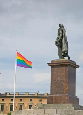 """Skillet mellom homoforskere og aktivister er ikke alltid så tydelig. Bildet er fra en homoparade i Stockholm. (Foto: iStockphoto)"""