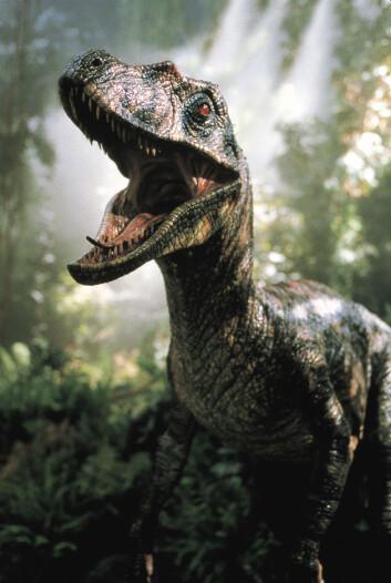 Velociraptor fra Jurassic Park III (Foto: UIP)