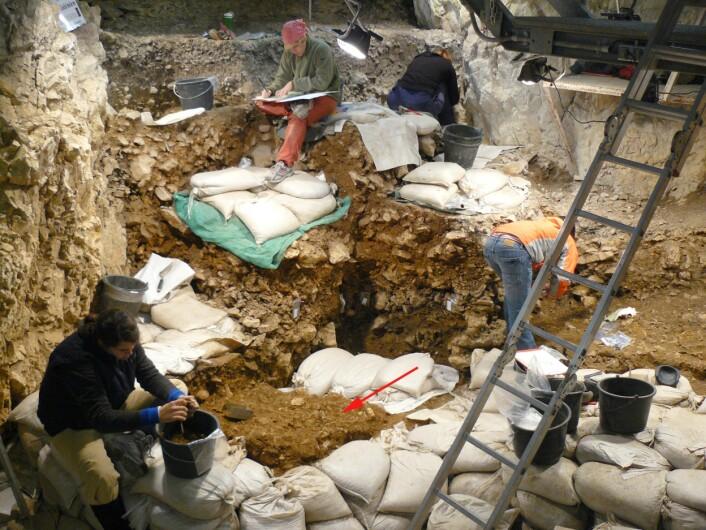 """""""Fra utgravingen iHohle Fels hule.Den røde pilen viser hvor fløytene ble funnet. (Foto:M.Malina; Copyright: University of Tubingen)"""""""
