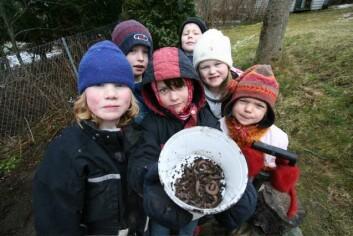 Skolebarn leter etter meitemark. Foto: Trond Knapp Haraldsen.