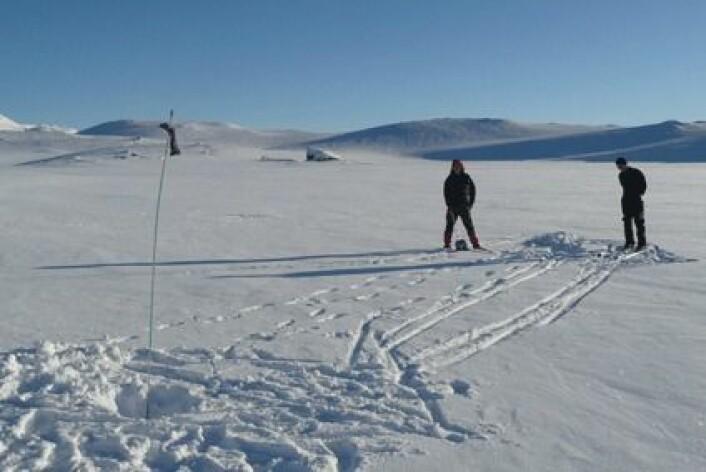 Finn vann i vinterfjellet. (Foto: Jannicke Høyem og Trond Augestad)