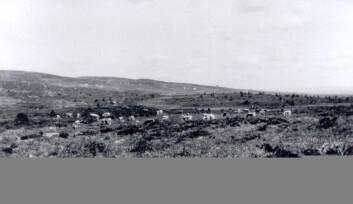 """""""Golsfjellet 1928. Vidt utsyn på grunn av beiting."""""""