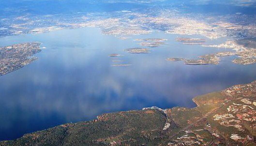 Flyfoto av indre Oslofjord. (Foto: Wikimedia Commons)