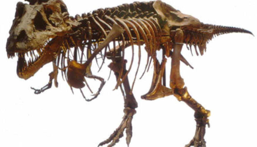Vev fra dinosaurer bare slim?