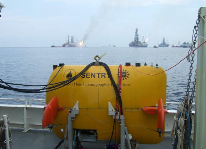 Det ubemannede undervannsfartøyet Sentry var vesentlig for oppdagelsen av oljepølsa på 1100 meters dyp. Her står farkosten på dekk på forskningsskipet Endeavor, over området for oljesølet fra Deepwater Horizon. (Foto: Dana Yoerger, Woods Hole Oceanographic Institution)