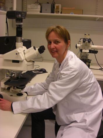 Gunhild Mari Mælandsmo på Institutt for Kreftforskning på Radiumhospitalet.