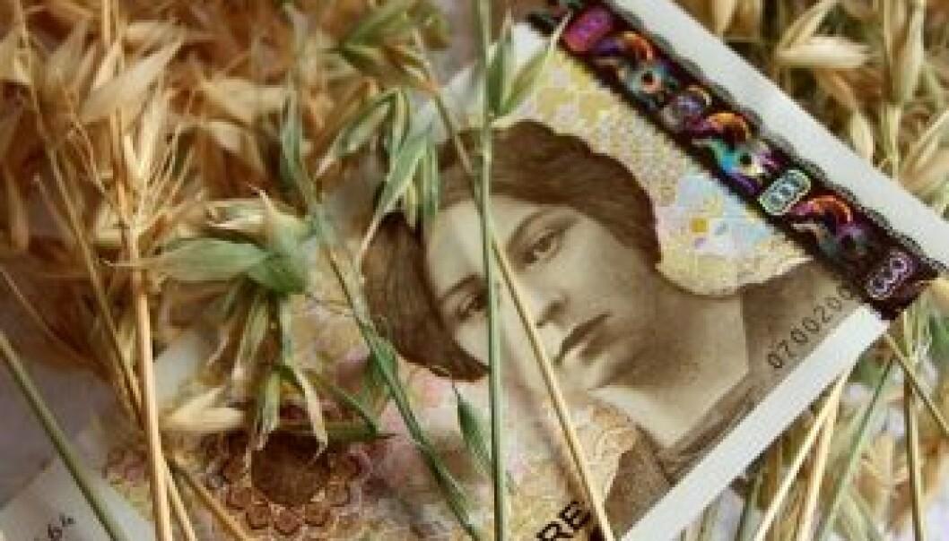 Bønder vil lære mer om økonomi og lønnsomhet. (Foto Morten Stene)