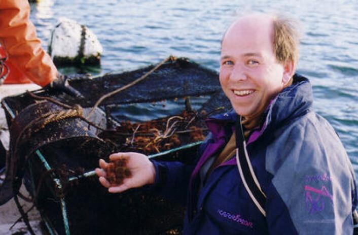 Min motivasjon har vært å legge til rette for en ny næring, sier seniorforsker Sten Siikavuopio i Nofima, som har forsket på kråkeboller i snart 15 år.